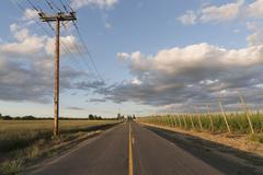 Empty road in diminishing perspective - stock photo