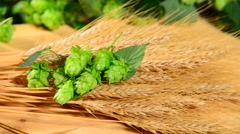 Hops and barley malt in the basket,zoom in Stock Footage