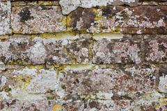 Weathered brick wall covered in lichen Stock Photos