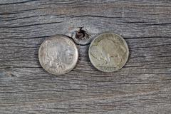 vintage buffalo nickels on age wood - stock photo