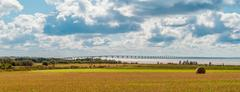 panorama of hay bales on a farm along the ocean with the confederation bridge - stock photo