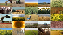 Montage selection of agriculture Stock Footage