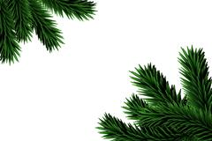 Stock Illustration of Digitally generated fir tree branches