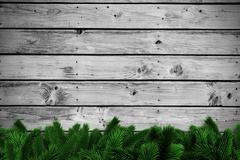 Stock Illustration of Fir branches on wooden planks