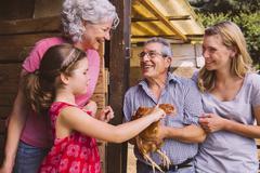 Girl petting chocken with grand parents Kuvituskuvat