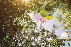 Helium ballons hanging in trees Stock Photos