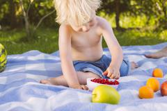 Boy picking redcurrants from a bowl on picnic blanket Stock Photos