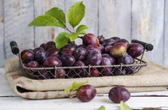 Wire basker of plums on a gunny bag Stock Photos