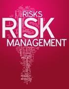 Word cloud risk management Stock Illustration
