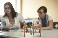 Optician's appliance and vocational school students Stock Photos