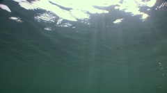 Underwater sunrays under water surface Stock Footage