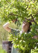 Portrait of a young man trimming apricot tree - stock photo