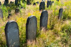 Old abandoned jewish cemetery in the ukrainian carpathians Stock Photos
