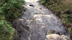4k Wild river closeup low mountain range Harz Stock Footage