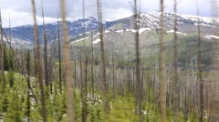 POV of Snow Covered Mountains Seen Through Bare Trees Stock Footage