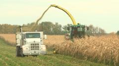 Farmers harvesting a corn crop Stock Footage