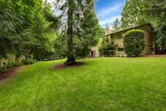 large backyard area with tree - stock photo
