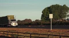 Big rig truck at sunrise, Cattle feed alfalfa Stock Footage