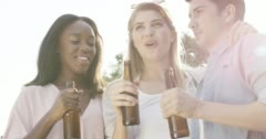 Friends celebrating drinking beer lifting arms summer outdoors Stock Footage