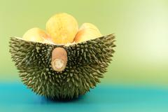 close up of durian fruit - stock photo