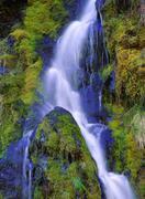 Mountain Stream, Yoho National Park, British Columbia, Canada Stock Photos