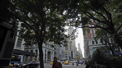 Empire State Building Manhattan New York City 5th Ave NYC Traffic Trees Stock Footage