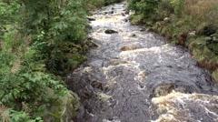 4k Wild river pan low mountain range Harz Stock Footage