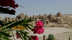 Fairy Chimneys, Flowers, Landscape, Backgrounds Stock Footage