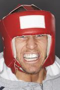 Portrait Of A Boxer Stock Photos