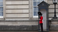 buckingham palace guard - stock footage