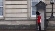 Stock Video Footage of buckingham palace guard