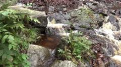 4k Waterfall tilt up in low mountain range Harz Stock Footage