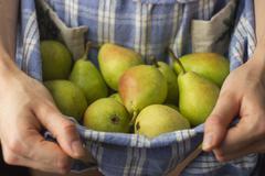 fresh organic pears - stock photo