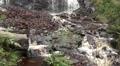 Schistous rock at waterfall bottom in low mountain range Harz HD Footage