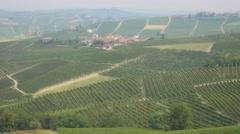 High Angle Shot Of Vineyards Stock Footage
