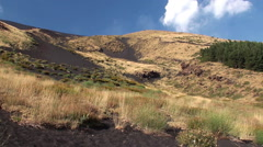 Plant species diversity at the foot of Mount Etna. Sicily Stock Footage