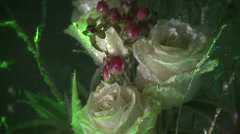 Creative abstract bright flowers and ice with air bubbles. Stock Footage