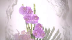 Flowers in ice at the winter exhibition of flowers. Stock Footage