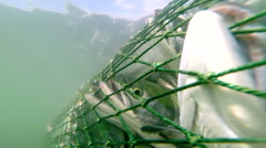 Stock Video Footage of Commercial fishing of salmon