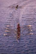 Overview of Rowing Race - stock photo