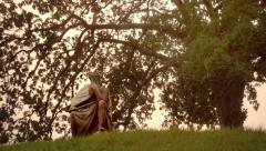 Viking statue under a big tree Stock Footage
