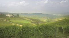 Panning Shot Of Vineyards Stock Footage