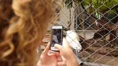 Woman Taking Photo of Cockatoo, Slow Motion. Stock Footage