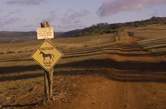 Horse Trail, Lana'i, Hawaii - stock photo