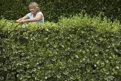 Woman Trimming Hedge Stock Photos