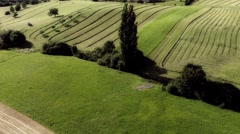 Farming-hay making-agriculture-1 Stock Footage