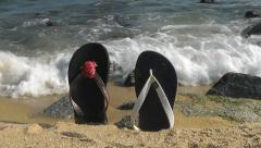 His and Hers Flip Flops Watch The Waves Stock Footage