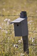 Birdhouse on Fencepost, Kananaskis Country, Alberta, Canada Stock Photos