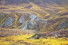 Alpine Tundra in Autumn, Tombstone Territorial Park, Yukon, Canada Stock Photos