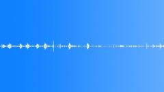 Bird crane common - HQ - STEREO - sound effect